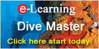 PADI Divemaster Online Course